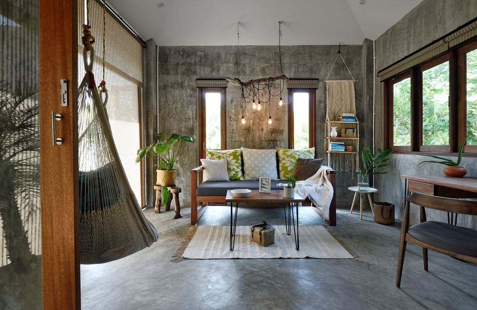 Decor sustenabil: tot ce aveti nevoie pentru o casa ecologica